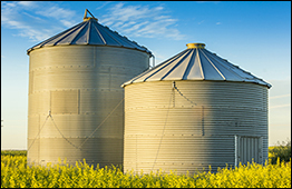Two grain bins (photo)